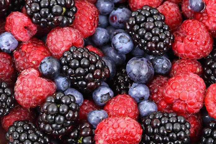 Eurohansa - Nadzienia i wsady owocowe dla każdego